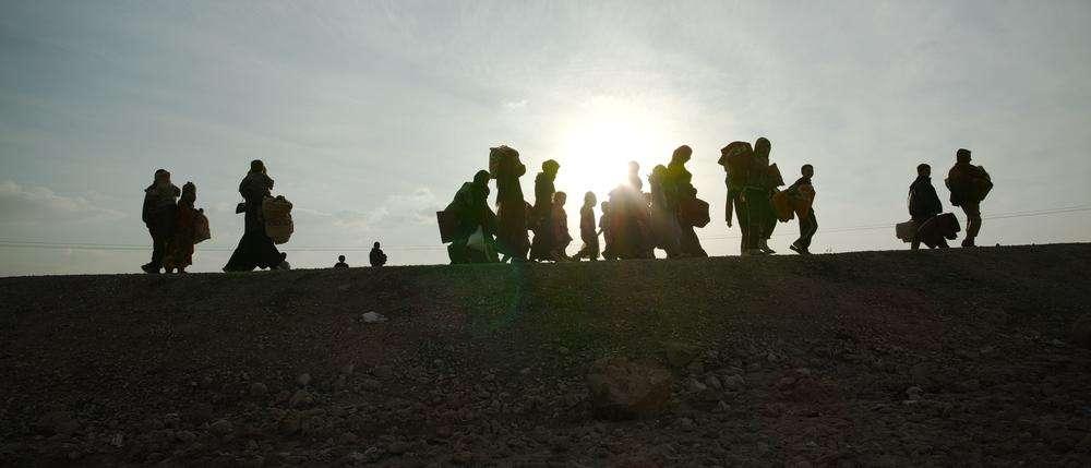 Global refugee and migration crisis
