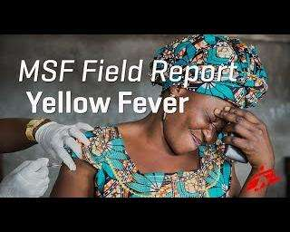 700K people vaccinated against yellow fever in DRC