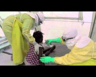 A global coalition of inaction on Ebola
